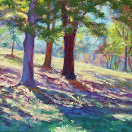 Bonnie Mason - September Shadows at Fairy Stone Park