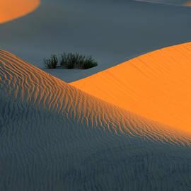Death Valley Serenade In Light by Bob Christopher