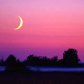 Setting Crescent Moon At Dusk by Douglas Taylor