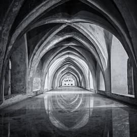 Baths At Alcazar Seville BW by Joan Carroll