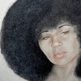 Jim Fitzpatrick - Sexy Aevin Dugas Holder of the Guinness Book of World Records for the Largest Afro