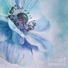 Shades Of Blue by Priska Wettstein