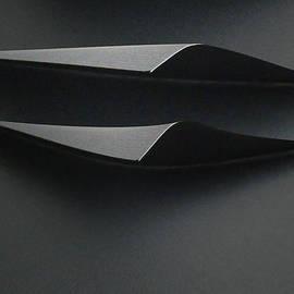 Shades Of Grey  by Anne Reeskamp
