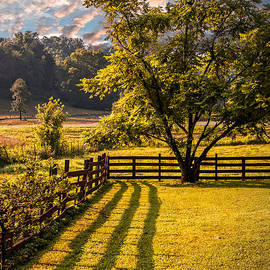Shadows Along the Fence by Debra and Dave Vanderlaan