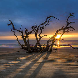 Shadows on the Sand by Debra and Dave Vanderlaan
