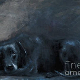 Sheba- Portrait Of A Homeless Man's Beloved Pet by Stella Violano