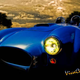 Shelby Cobra Before the Storm by Chas Sinklier