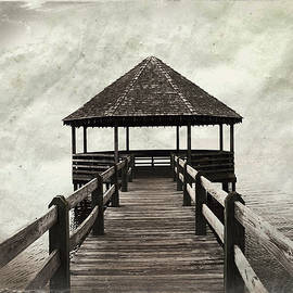 Shelter From The Storm by Paulette B Wright