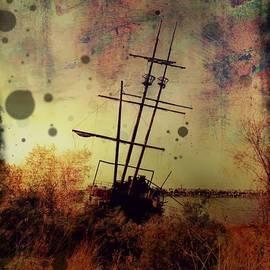 Tracy Munson - Shipwreck