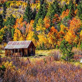 Sierra Solitude 2 by Scott McGuire