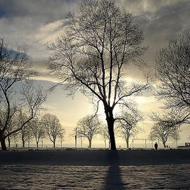 Brian Chase - Silhouettes and a Long Winter Shadow