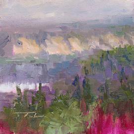 Talya Johnson - Silver and Gold - Matanuska canyon cliffs river fireweed