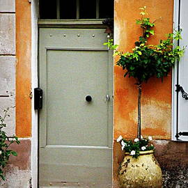 Lainie Wrightson - Simple Provence Door