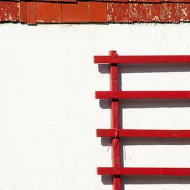 Karol Livote - Simple Red