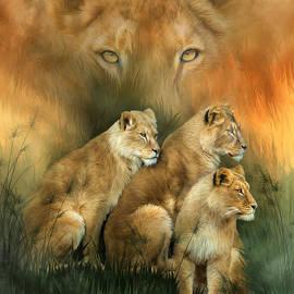 Sisterhood Of The Lions by Carol Cavalaris