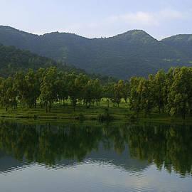 Sunil Kapadia - SKC 3956 Nature
