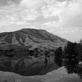 Sunil Kapadia - SKC 8278 Mirror Reflection
