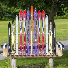 Ski Bench - Fort Foster - Maine by Steven Ralser