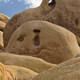 Skull Rock Abstract by Peter J Sucy