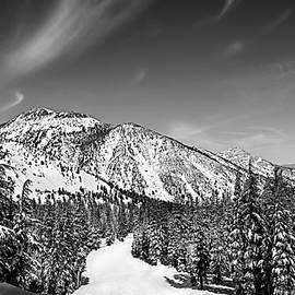 Ski Run by Maria Coulson