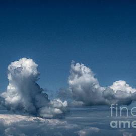 Sky Walking by Kim Lessel