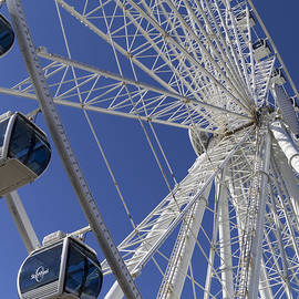 Sky Wheel At Myrtle Beach by MM Anderson