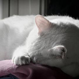 Mary Zeman - Sleep
