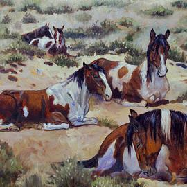 Robin Reed Masek - Sleeping In The Desert