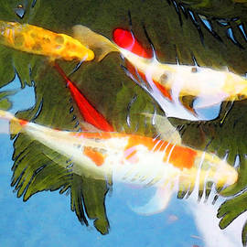 Sharon Cummings - Slow Drift - Colorful Koi Fish