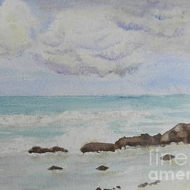 Pamela  Meredith - Small Waves Breaking near Rocks