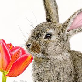 Smells Like Spring by Sarah Batalka