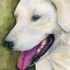 Smiling Lab by Stephen Anderson