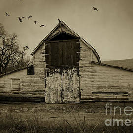 Smokey Prairie Barn  by Janice Pariza