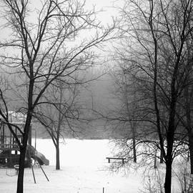 Karen  Majkrzak - Snow and Fog in Playground
