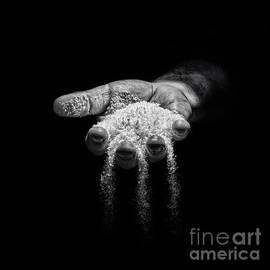 ARTSHOT  - Photographic Art - Snow