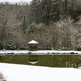 Snow At The Pond by Michael Waters