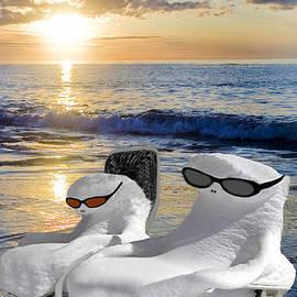 Gary Keesler - Snow Bird Vacation