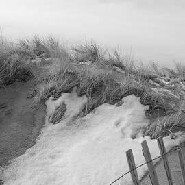 Eunice Miller - Snow Covered Sand Dunes