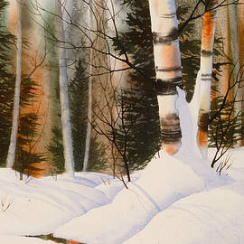 Snow Crevice by Teresa Ascone