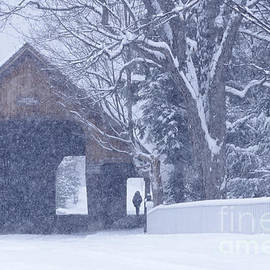 Alan L Graham - Snow Day