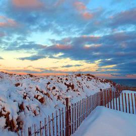 Dianne Cowen - Snow Dunes at Sunrise