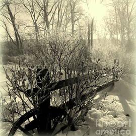 Snow Fog Sunrise by Linda Galok