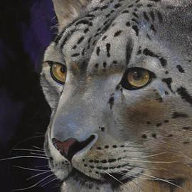 Bill Dunkley - Snow Leopard