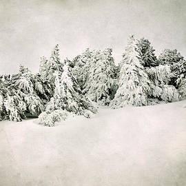 Guido Montanes Castillo - Snow time. Vintage
