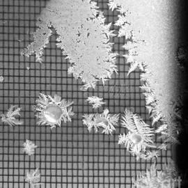 Yumi Johnson - Snowflakes abstract 1