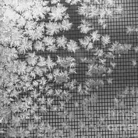 Yumi Johnson - Snowflakes abstract 2
