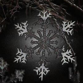 Snowflakes by Cynthia Guinn