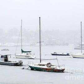 Ed Weidman - Snowstorm On Harbor
