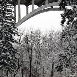 Wendy Gertz - Snowy Day
