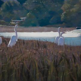 Christopher Reid - Snowy Egrets ICW